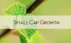 small_cap_growth