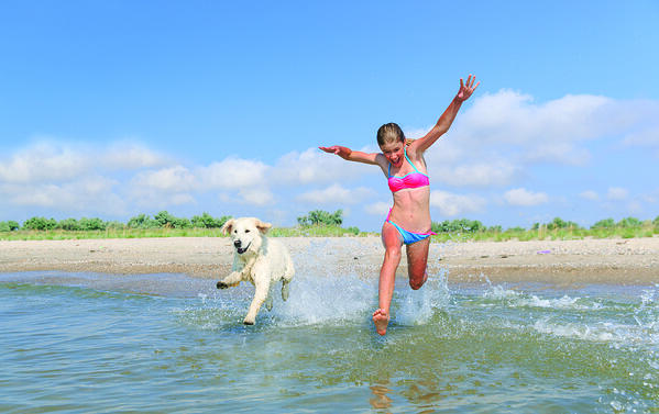 DHvillas-Le migliori spiagge per cani nelle Marche per un estate pet friendly