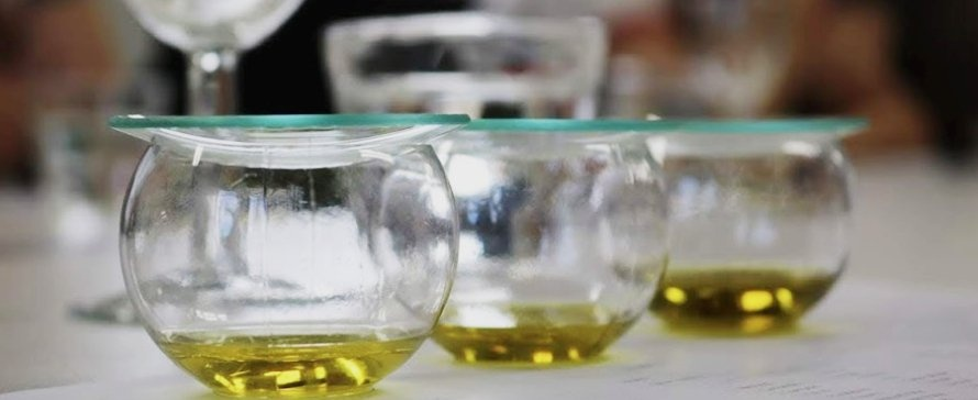 Clear olive oil tasting cups with glass watch and oil
