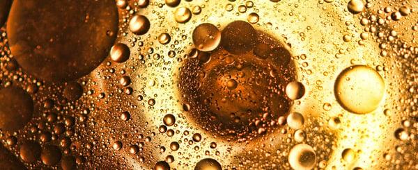 Pasos en la elaboración del aceite de oliva virgen