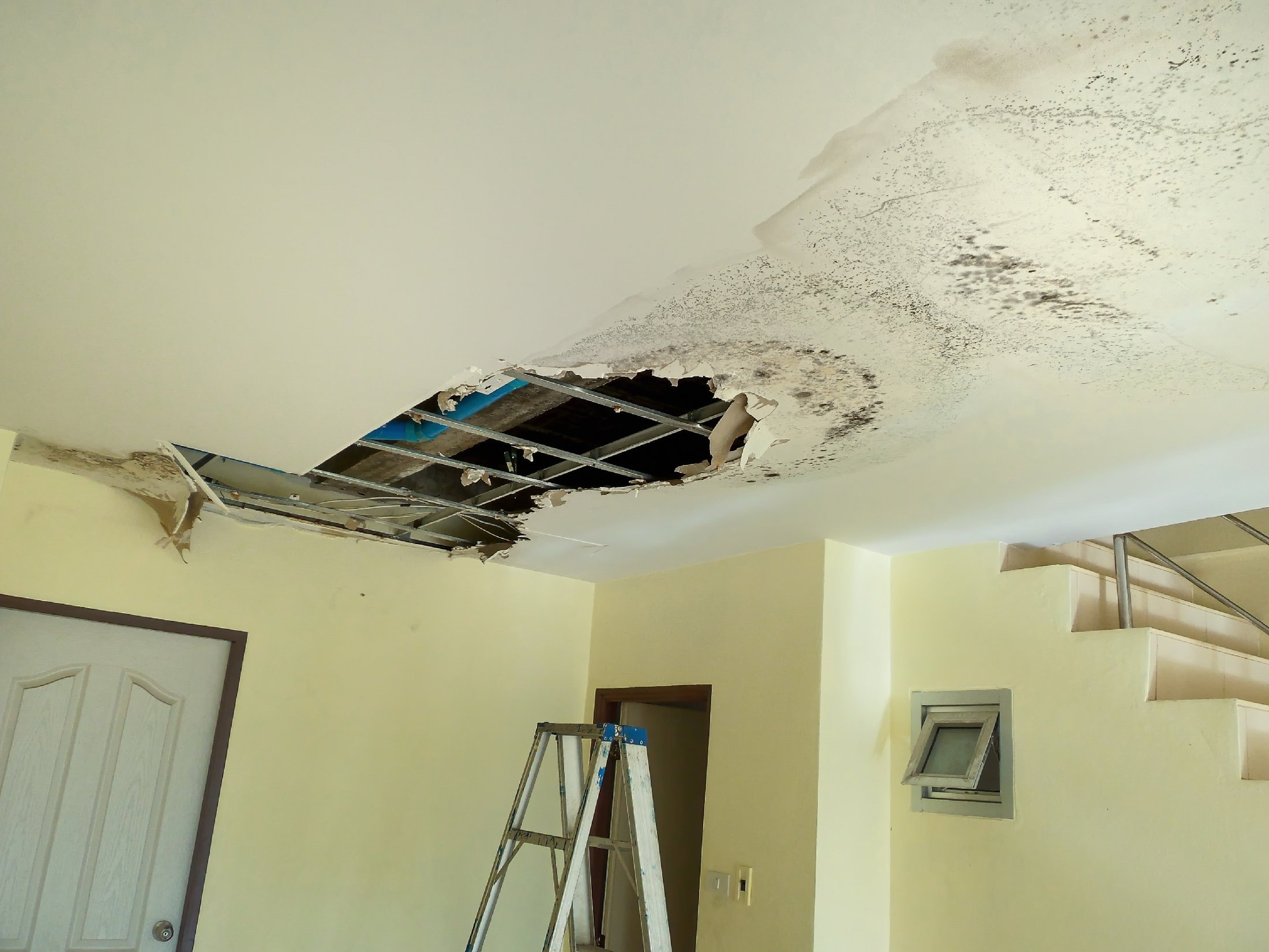 image representing Top 3 Causes of Plumbing Disasters You NEED to Know