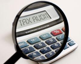 tax_audit_calculator