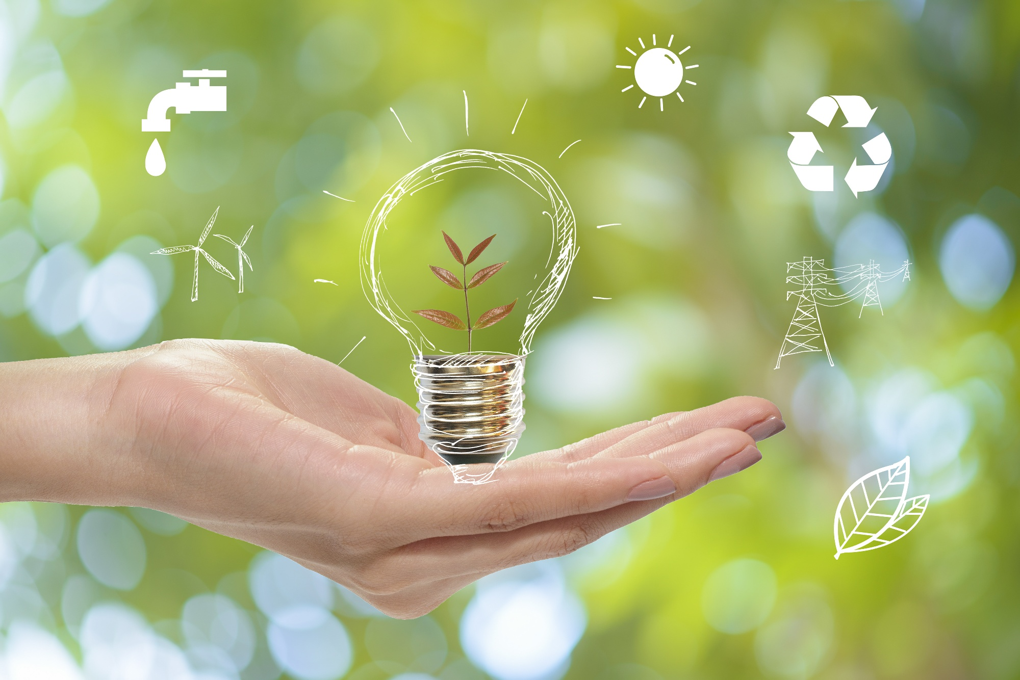 Can you afford NOT to 'Go Green' in your business?
