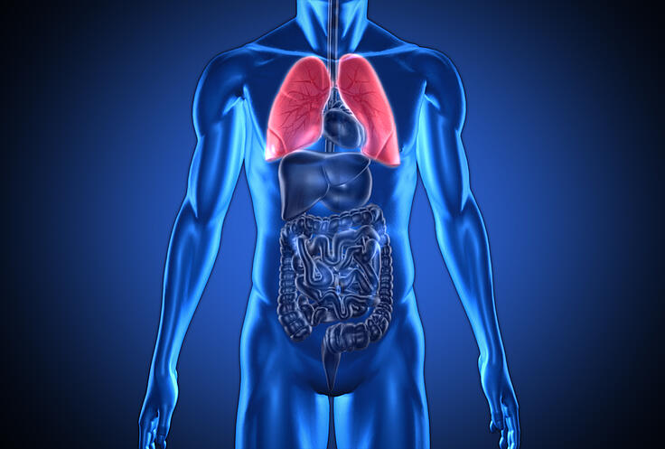 COPD Nutrition and COPD Medications