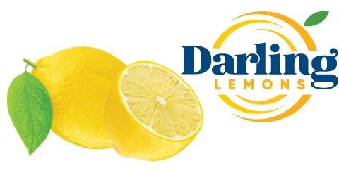 Darling Lemons
