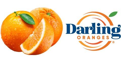 Darling Oranges