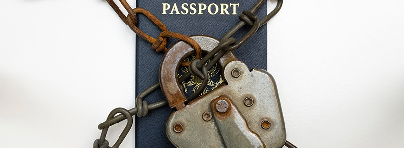 Back Taxes Passport 2