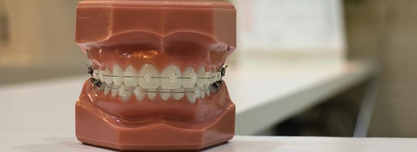 dental medicaid