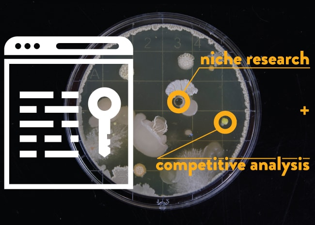 Niche research and competitive analysis