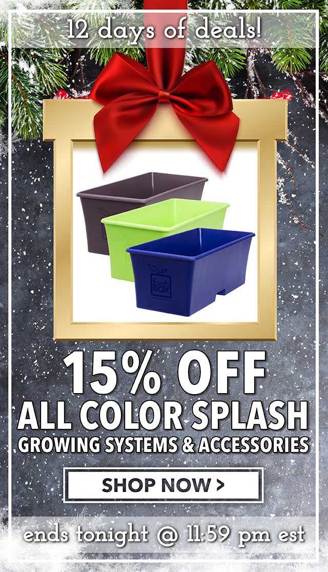 12 Days of Deals - Day 4