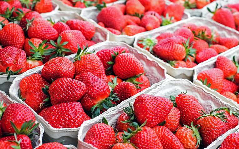 Berry growers take control of growing with IRRInet