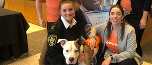 Watch: What do GenNext & dog adoptions have in common?