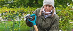 Watch: Garden clean up with NorWest Community Food Centre