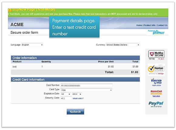 Payment Details Page - BlueSnap