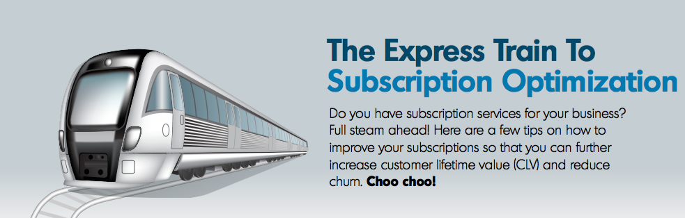 express_train_to_subscription_optimization_bluesnap