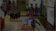 Augmented reality in early childhood and pre-education