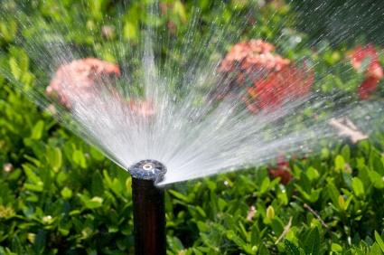 Sprinkler-Residential.jpg