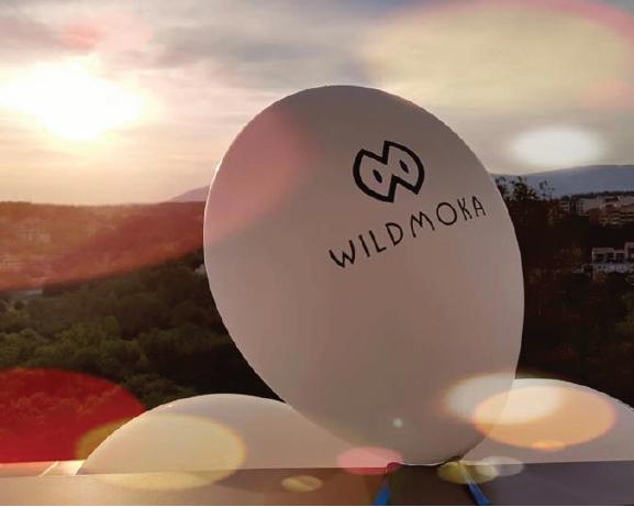 Wildmoka-funds-raised
