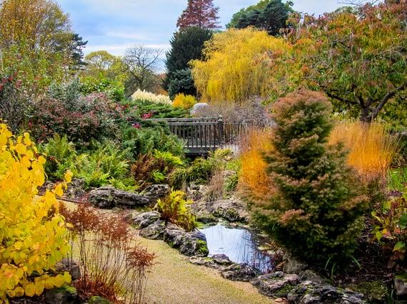 Goldershill park