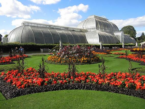 The Palm House at Kew Gardens