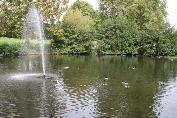 Lake at Manor House Gardens