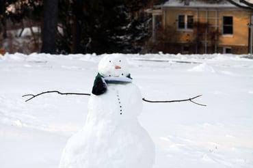 Snowday_Snowman