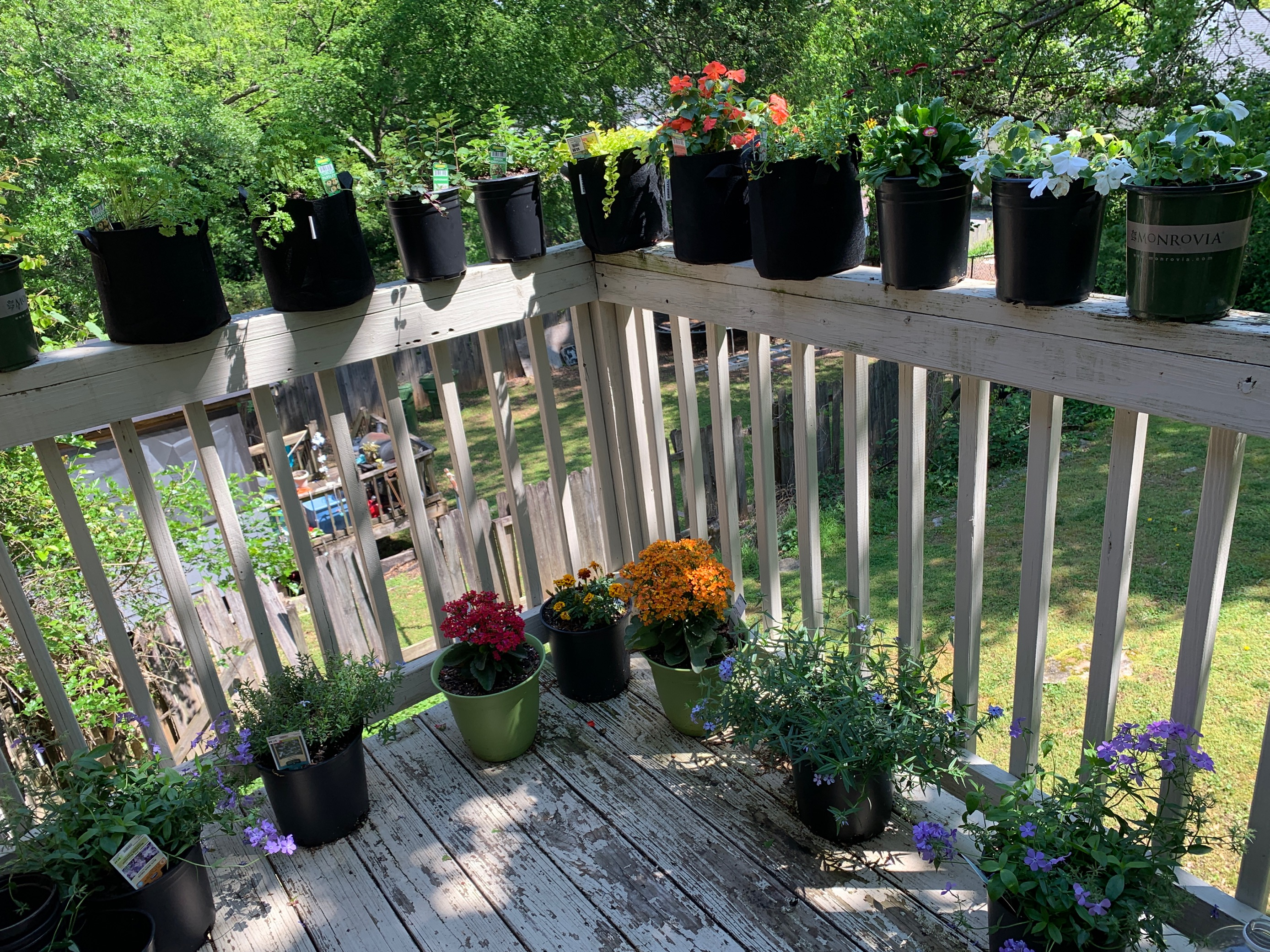 View from a balcony with many pot plants