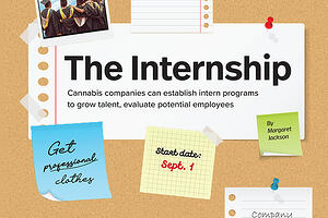 The Internship | Marijuana Business Magazine Talks to springbig about Interns in the Cannabis Industry