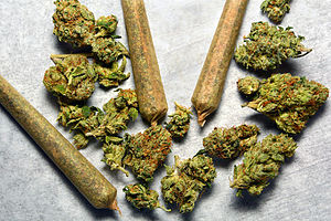 8 Foolproof Ways to Promote Your Dispensary Loyalty Program