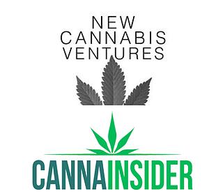 How springbig Helps Cannabis Retailers Win Loyal Customers