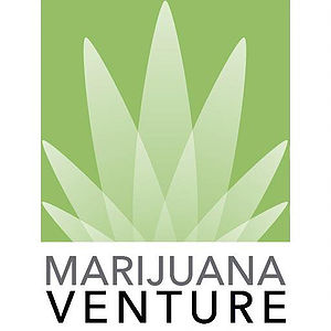 Marijuana Venture Highlights springbig's Loyalty Software in Latest Edition