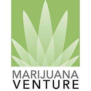 Marijuana Venture Highlights springbig's Loyalty Software in Latest Edition