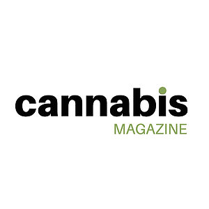 cannabis magazine dedicates a piece on springbig: dispensaries stoked on mobile loyalty programs