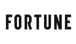Fortune Magazine Highlight's springbig's $3.2m raise