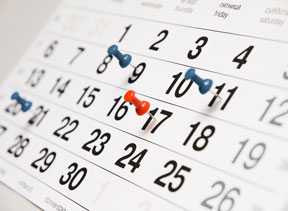 Learn What Customized Online Scheduling can do for Veterinary Offices