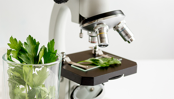 microscope_001