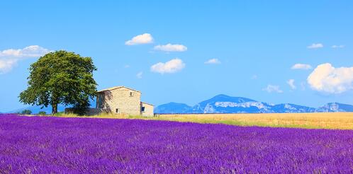 buying-property-in-france