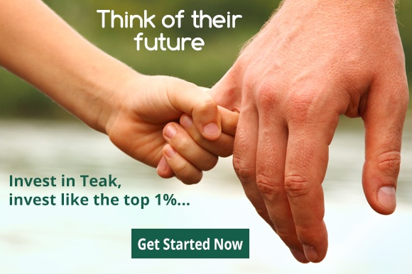 Teak-Newsletter-Banner.jpg