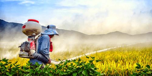 El pesticida más usado en España será prohibido en 2020 por la UE.