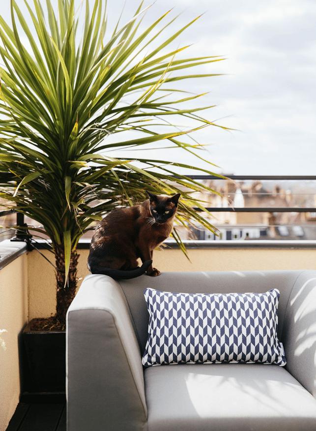 Balcony terrace seating design