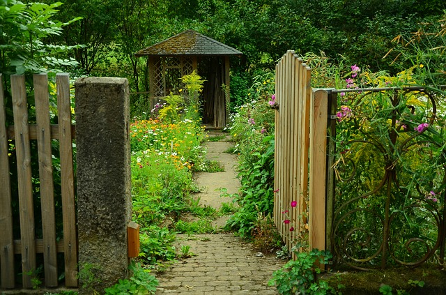 How to Plan Your Backyard Shed