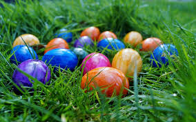 Getting Ready for an Easter Egg Hunt