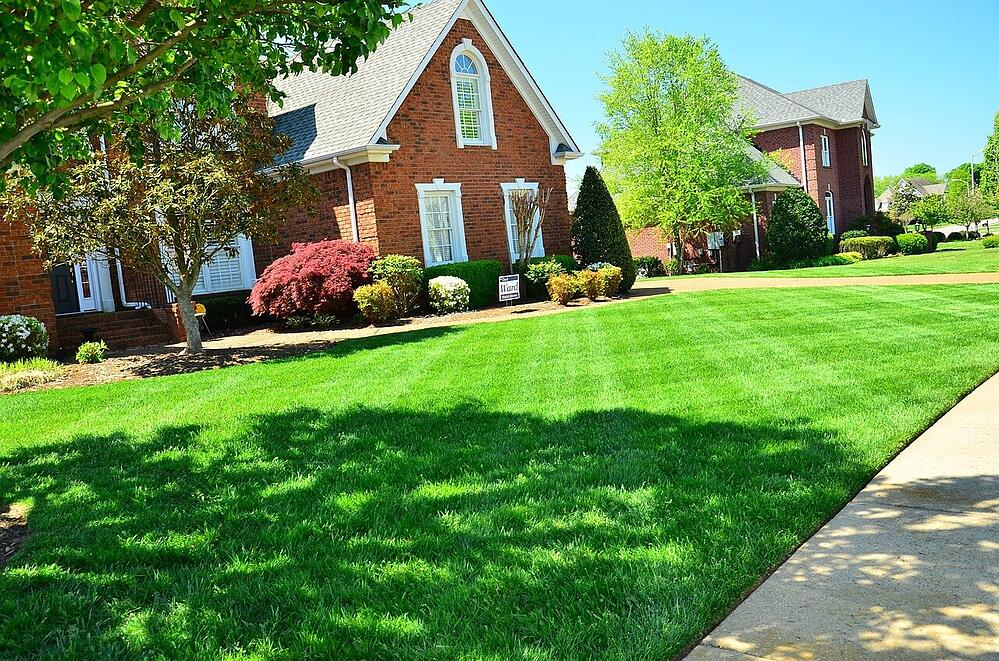 Getting Your Lawn Ready for the Hot Summer Months