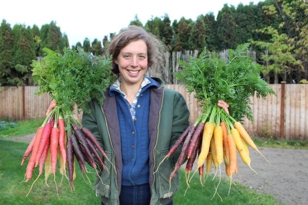 Carrots, carrot trial, Linda, malbec, purple sun, purple hae, rainbow, cornucopia 102318  (5)