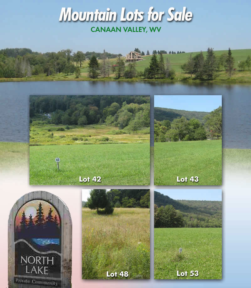 Canaan Valley lots for sale