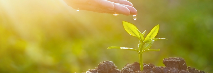 Get Your Guide to Lead Nurturing | iContact