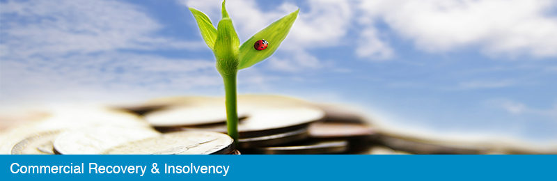 Commercial Recovery & Insolvency