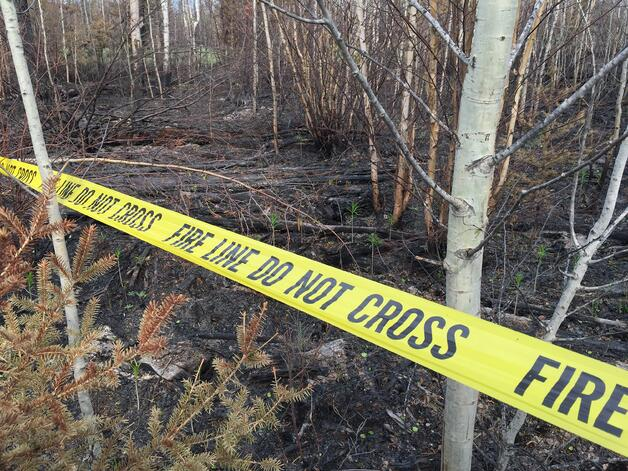Fire line yellow barrier tape for wildfire investigation.