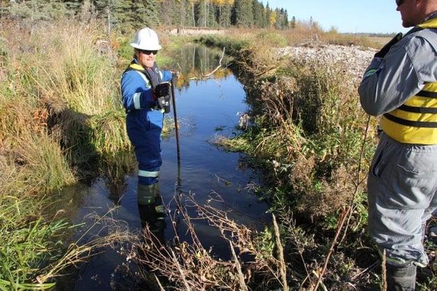 field_visit_regulator_hydrocarbons_sediment
