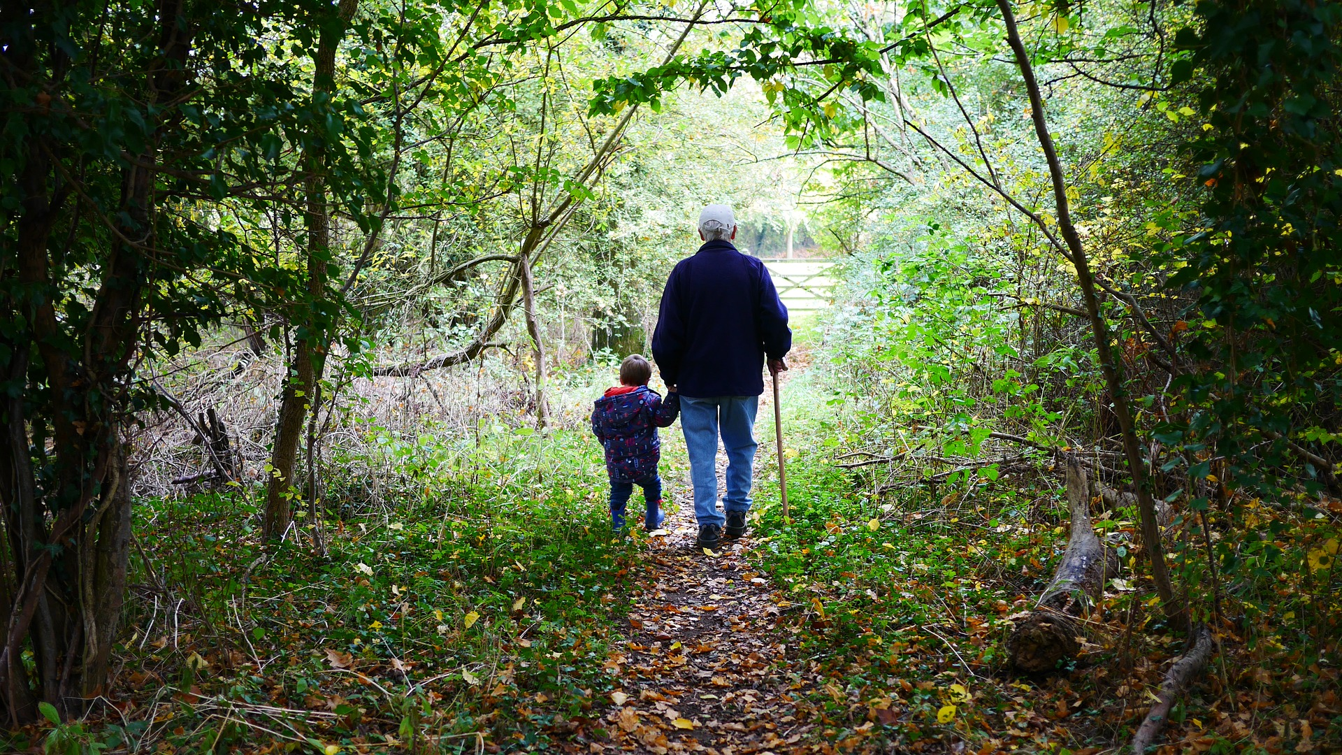 Grandparents plant the seed, knowing full well they may not see the fruit of their harvest.